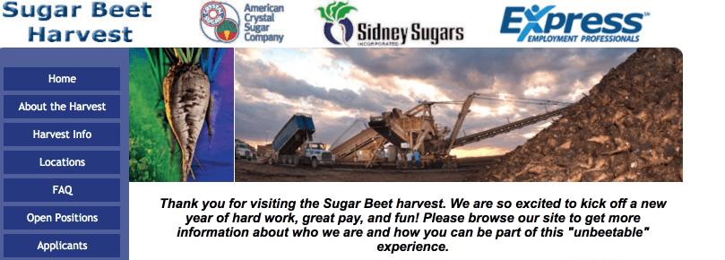 Seasonal Jobs for RVers, Sugar Beet Harvest